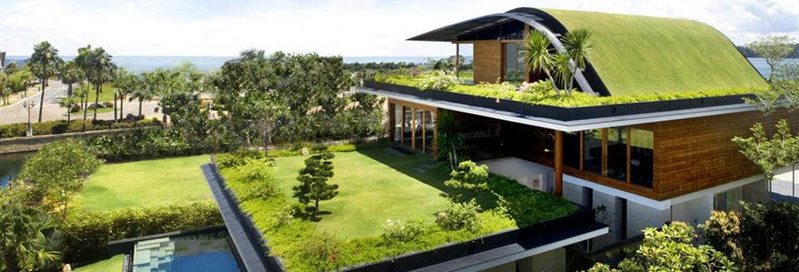 Végétalisation des toitures